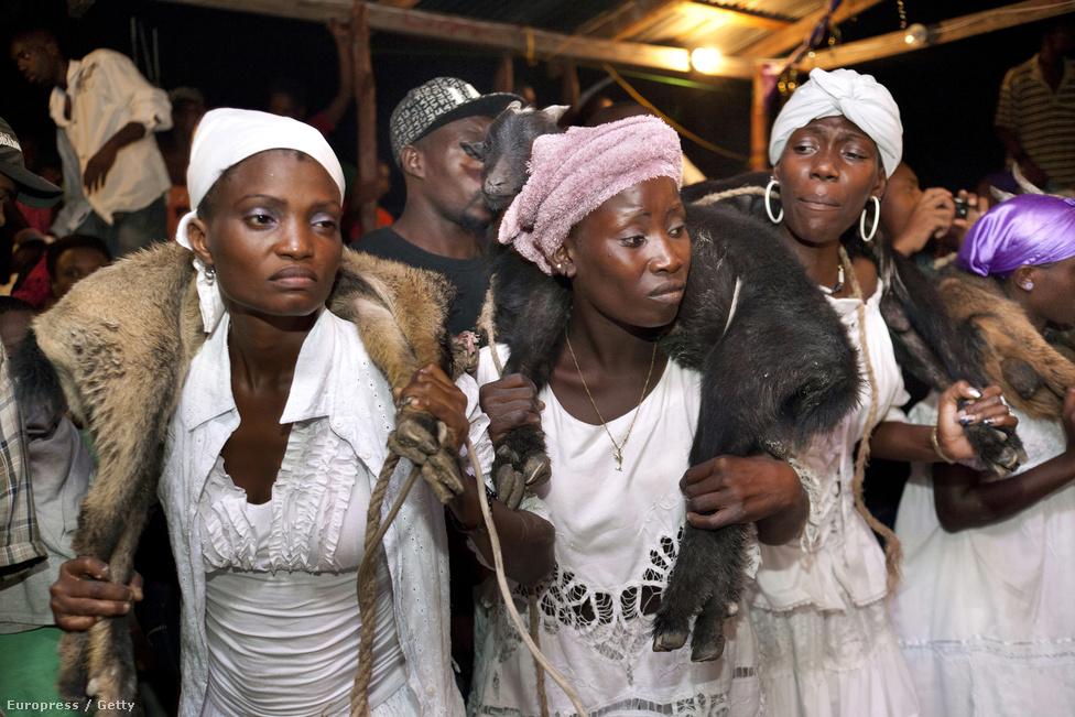 Vudu szertartással, kecskék levágásával tisztelegnek a holtak előtt Haitin