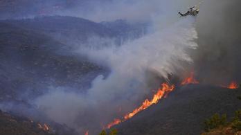 Tovább pusztít az erdőtűz Kaliforniában