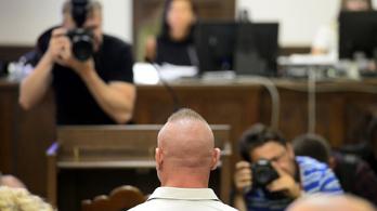 Négy év fogházra ítélték a Dózsa György úti gázolási ügy vádlottját