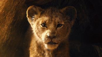 Folytatja Az oroszlánkirályt a Disney