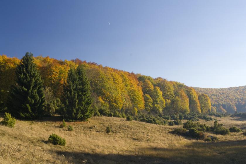 Ilyen gyönyörű a Bükk ősszel: a Tar-kőről nyíló kilátás az egyik legszebb az országban