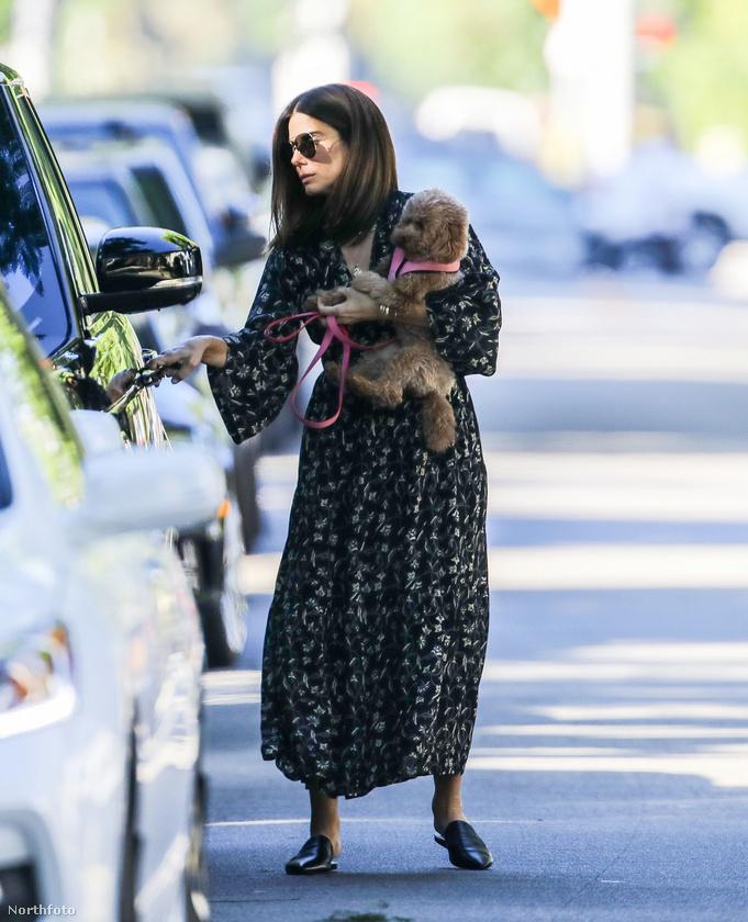 és egy frappáns vizuális átkötéssel megmutatjuk, milyen, amikor a színésznő nem munkakörileg tart a kezében egy kutyát (ezen a fotón tavaly októberben indult egy parkba).