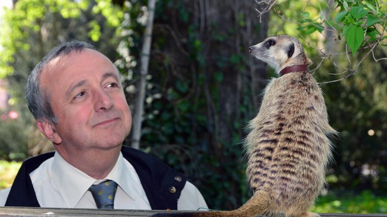 A politikus a következő választásról, Persányi Miklós az állatokról álmodik
