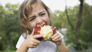 Tényleg fogyhatsz, ha jobban megrágod az ételt? Itt a tudomány válasza!