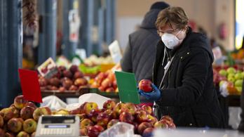 Új kampány indul az almafogyasztás népszerűsítéséért