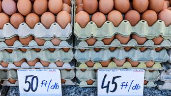 Drágult a tojás, mégis többet ettünk a korlátozások idején