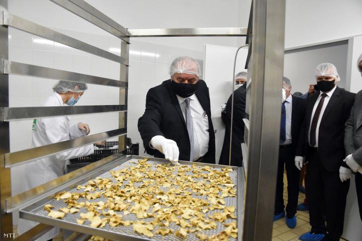 Zambó Péter az Agrárminisztérium erdőkért és földügyekért felelős államtitkára (b2) a Nagykunsági Erdészeti és Faipari Zrt. (NEFAG) szolnoki szarvasgomba-feldolgozó üzemében az átadóünnepség napján, 2020. október 8-án. A társaság tavaly 248 millió forint összértékû fejlesztést hajtott végre, amihez 80 millió forint beruházási támogatást kapott az Agrárminisztériumtól