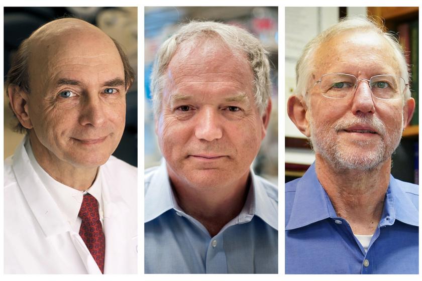 Harvey J. Alter amerikai, Michael Houghton brit és Charles M. Rice szintén amerikai tudós kapta idén az orvosi-élettani Nobel-díjat a hepatitis C-vírus (HCV) felfedezéséért. A eredményeik döntő jelentőségűek voltak a vér útján terjedő májgyulladás (hepatitis) elleni küzdelemben.