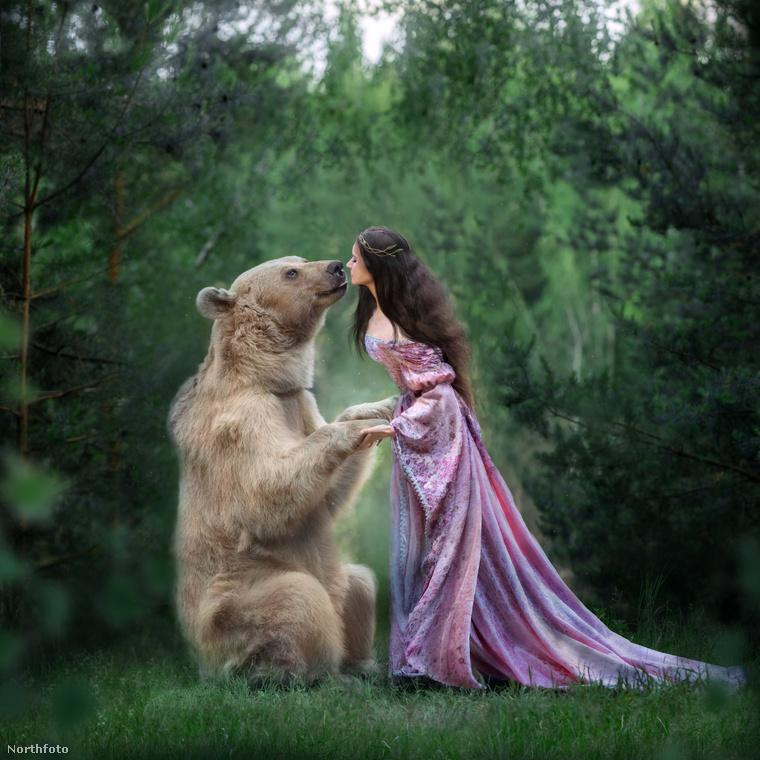 Még Putyin pártjának, az Egységes Oroszországnak alogójában is van egy medve