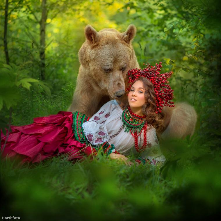 Bár kétségtelen, hogy Stepan az egyik legnépszerűbb maci Oroszországban, a medve régóta az ország szimbóluma