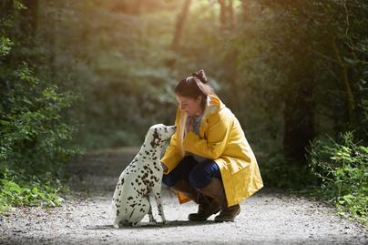 kutya-ember-kapcsolat5