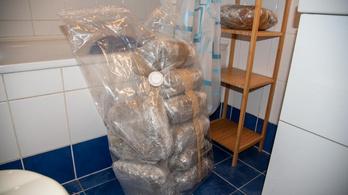 Százmillió forint értékű drogot pihentettek egy újlipótvárosi lakásban