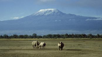 Nem csak a globális felmelegedés miatt zsugorodik a Kilimandzsáró hósapkája