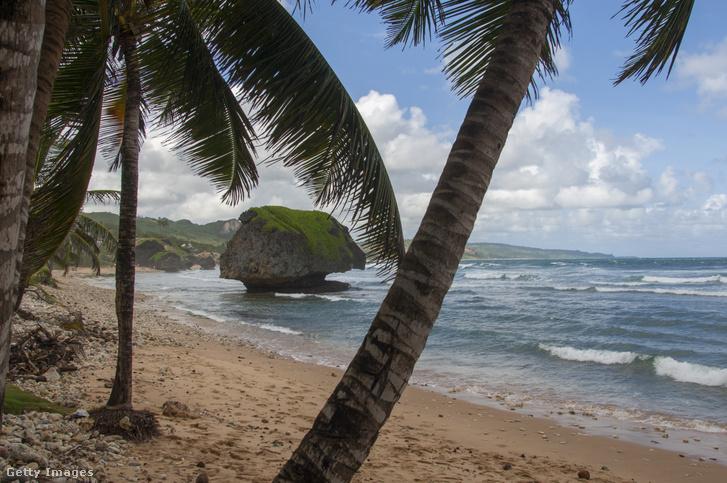 Bathsheba tengerpart a fekete-listás Barbadoson