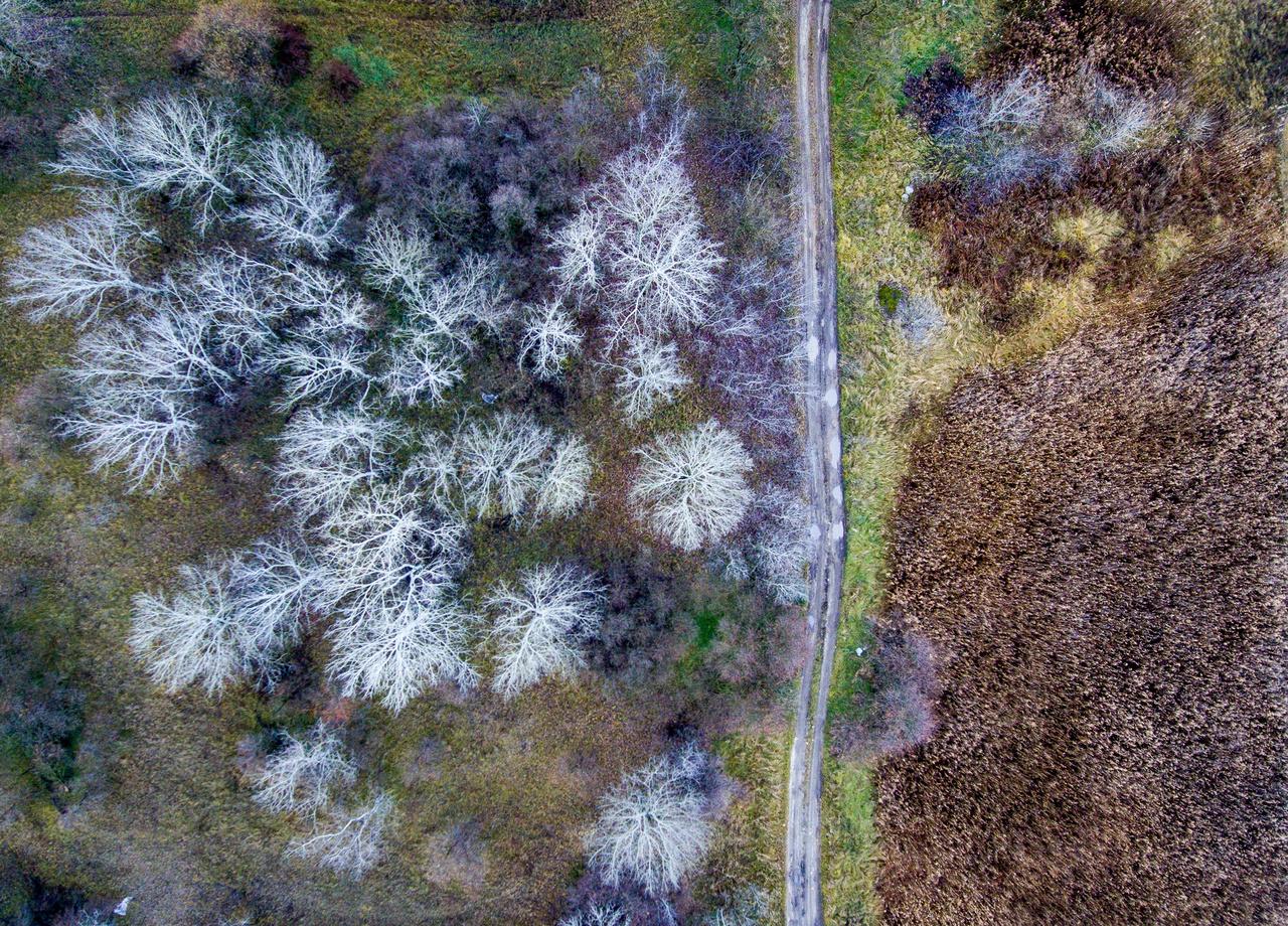 Madártávlatból a Szeged-környéki táj. Az első drónos felvételek egyike.