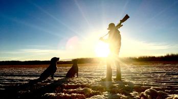 Durva veszteségekre készülhetnek a vadásztársaságok