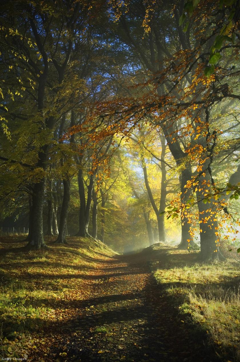 heti-időjárás-ősz1