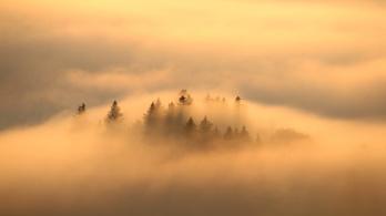 Európa természetes élőhelyeinek 80 százaléka kedvezőtlen állapotban van