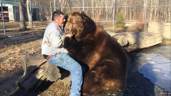 2020-10-19 19 10 03-Jim playing with Jimbo the bear. - YouTube.p