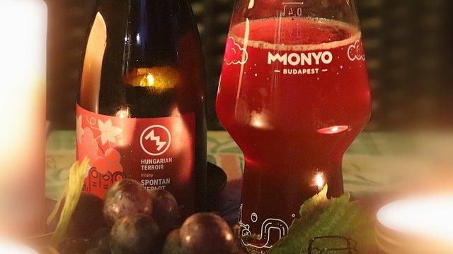 Hungarian Terroir - 2 éves hordóérlelt sör