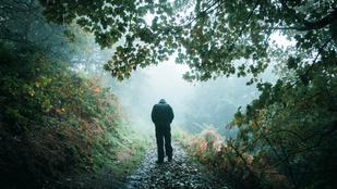 Miért csaponganak gondolataink séta közben?