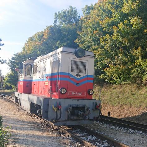 DSC 5958