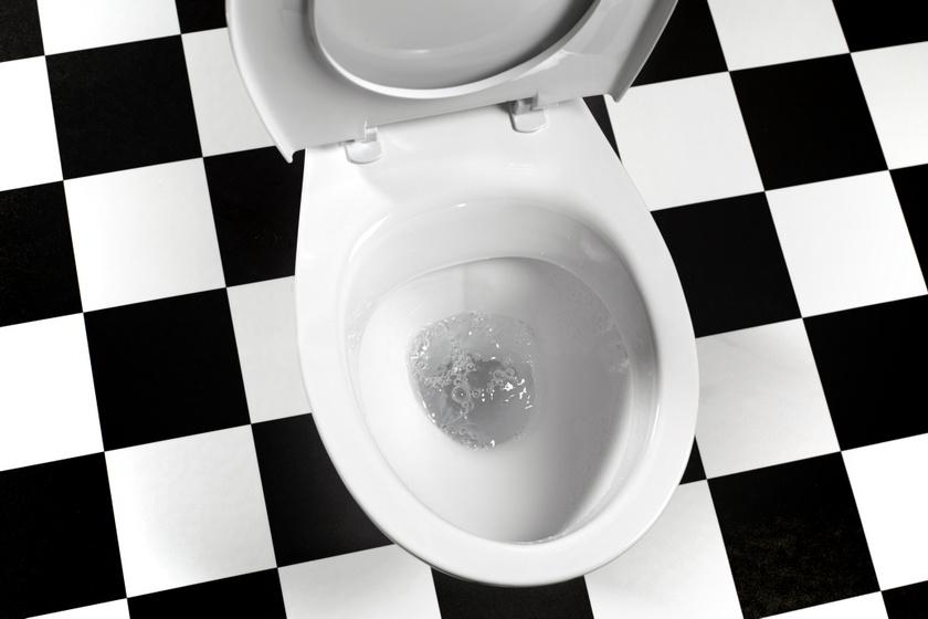 Nem kell sokat csutakolni, csak tedd a vízbe, és várj: a WC vízkőgyűrűje így egykettőre eltűnik