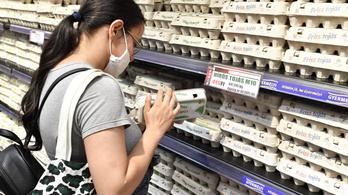 Agrárium: nyertes a tojáságazat, vesztes a sertésszektor