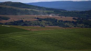 EP-s agrárreform: több környezetvédelem, kevesebb támogatás a nagybirtokos gazdálkodóknak