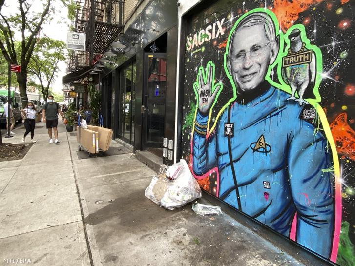 Graffiti Anthony Fauciról, az amerikai allergológiai és fertőző betegségekkel foglalkozó országos intézet (NIAID) igazgatójáról New Yorkban