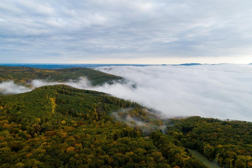 Csodálatos az ősz a Mecsekben: gyönyörű képeken mutatta meg a magyar fotós