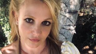 Britney Spears férjhez menne és szülne, de nem hagyják - állítja a sminkese