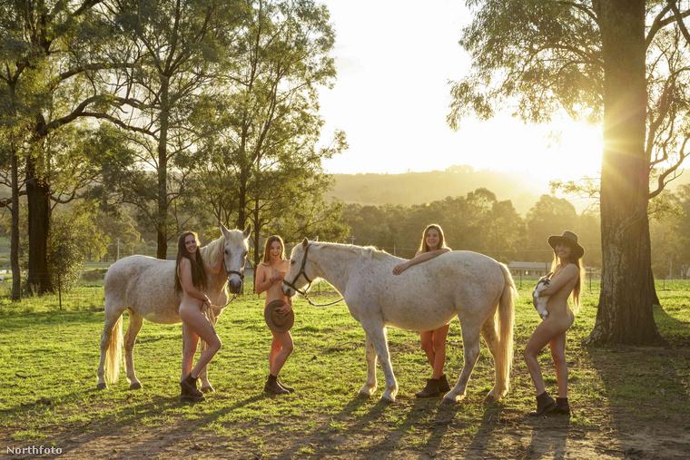 Ezúttal az ausztrál mezőgazdaságban dolgozókat próbálják majd segíteni a befolyó összeggel.