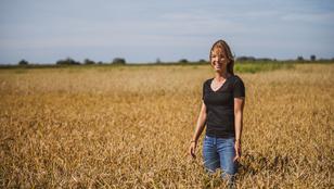 Így készül a magyar rizs, amit a japán séf is hazavitt volna