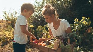 Ennyi zöldséget és gyümölcsöt kellene ennie naponta a gyereknek