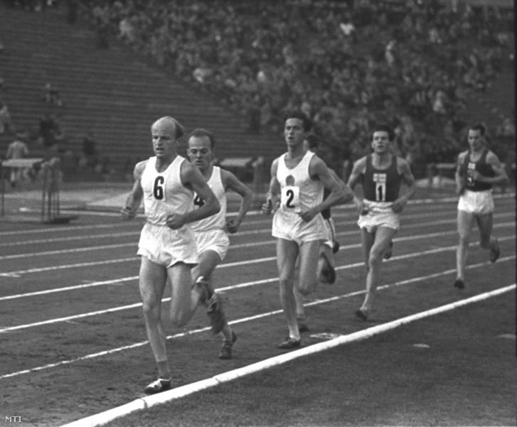 Szabó Miklós (6), Kovács József (4) és Iharos Sándor (2) futnak az élen az 5000 méteres síkfutás mezõnyében a Magyarország-Finnország közötti válogatott atlétikai viadal elsõ napján a Népstadionban.