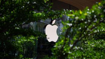 Hamarosan elindítja internetkeresőjét az Apple?