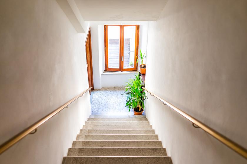 Tárolhatod a muskátlit télen a lépcsőházban? A társasházi problémákra válaszolt az ügyvéd