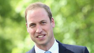Vilmos herceg áprilisban koronavírusos volt, mindenki elől eltitkolták