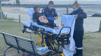 Cápa támadott meg egy 13 éves fiút Ausztráliában
