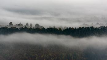 Köd miatt hat megyében figyelmeztet az OMSZ