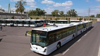 Több buszjárat indul Győrben és Szegeden is
