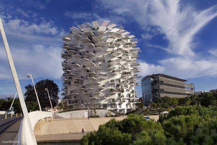 A következő néhány képen egy Montpellier-i lakóházat láthatnak, a Fehér Fát