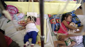 Egyetlen év alatt több mint negyedmillióan haltak meg kanyaróban