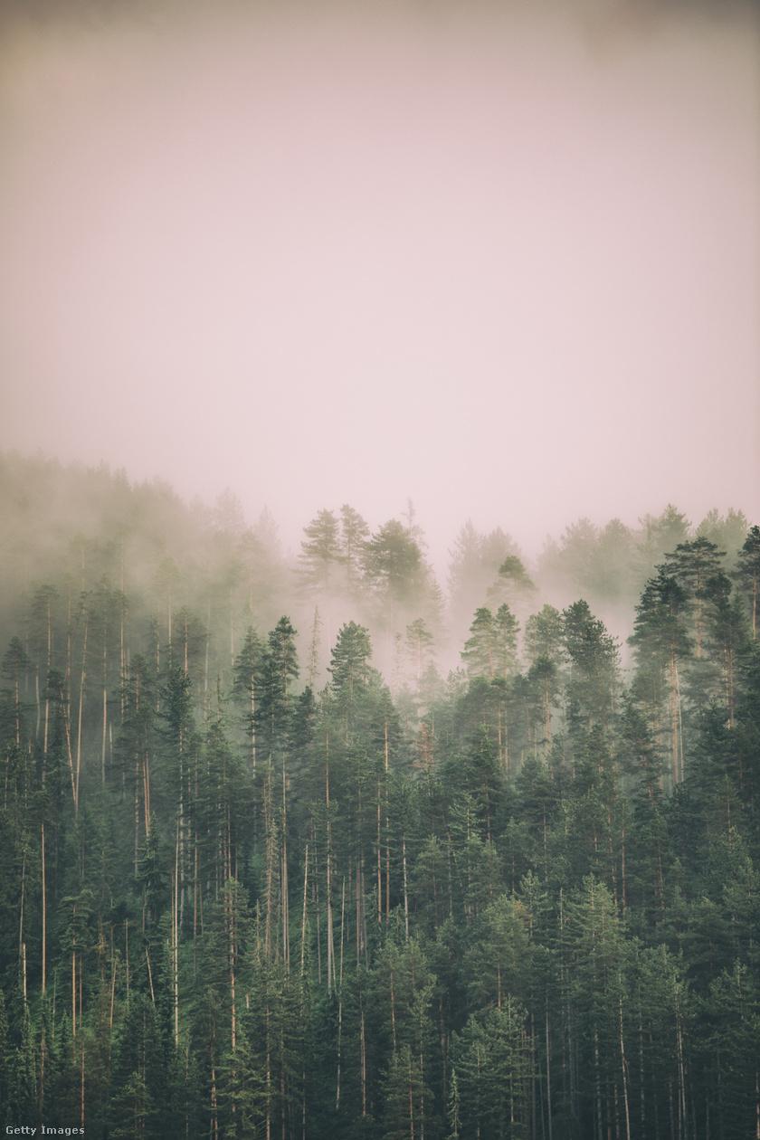 ködös-idő2