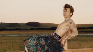 Nem mindenki örül annak, hogy Harry Styles a Vogue címlapján pózol