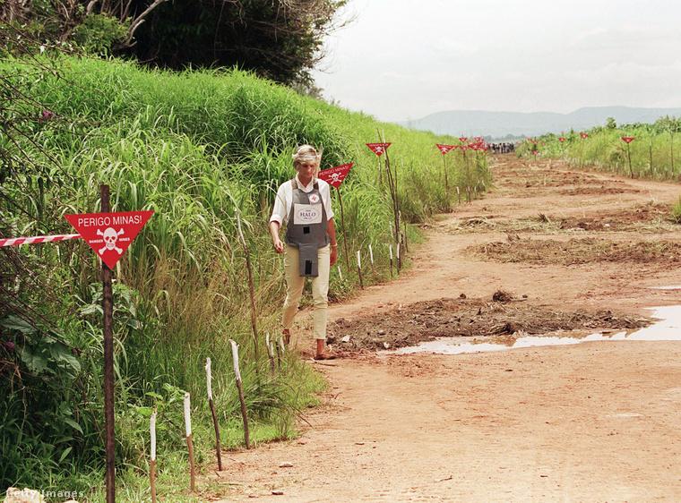 Itt éppen dél-afrikai körútja egyik állomásán, Angolában láthatja, ahol a taposóaknák által okozott pusztításra szerette volna felhívni az emberek figyelmét
