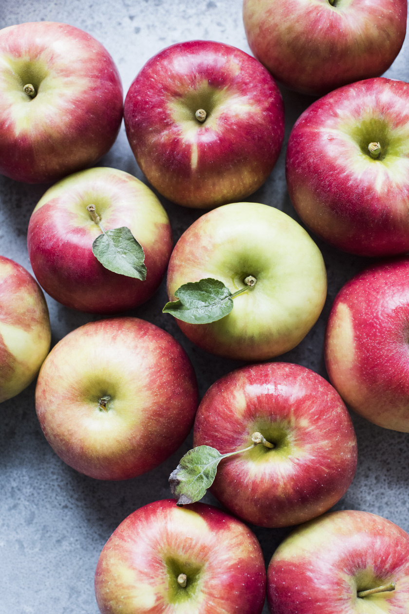 alma álló