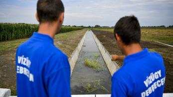 WWF: Katasztrofális következményei lehetnek az új vízgazdálkodási törvényjavaslatnak