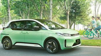 Byd D1: elektromos autó bérsofőröknek